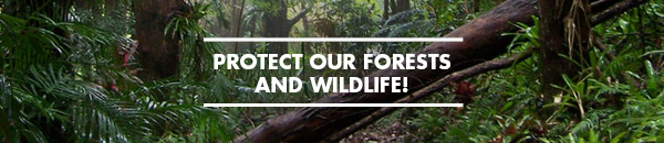 Protect Forests and Wildlife