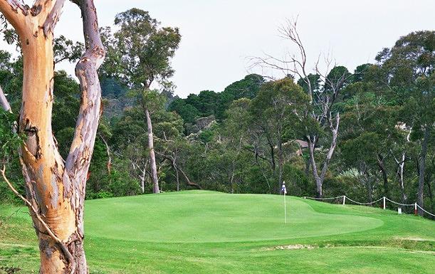 Katoomba Golf bulldozing into habitat