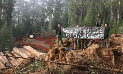 Sacred Upper Florentine Valley being logged