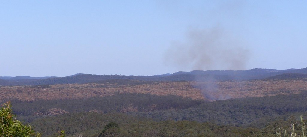 NPWS Arson of Williams Ridge