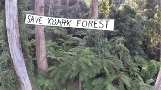 Save Kuark Forest, East Gippsland
